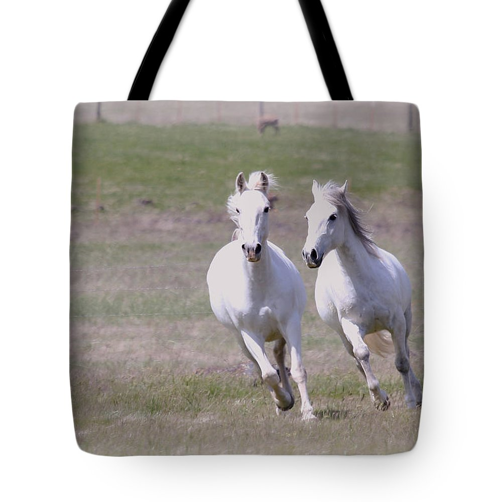 Horses Tote Bag featuring the photograph Lipizzaner Stallions by Athena Mckinzie