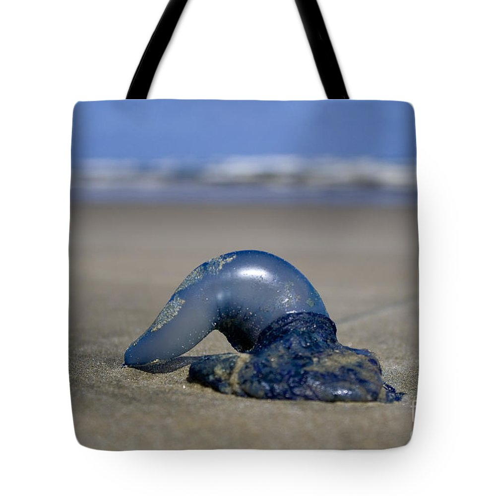 Baylys Beach Tote Bag featuring the photograph Bottle Of Blue by Kym Clarke