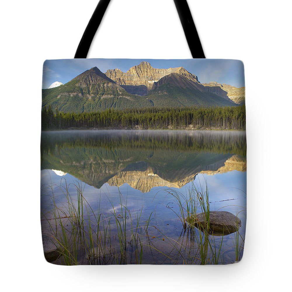 Alberta Tote Bag featuring the photograph Bow Range And Herbert Lake Banff by Tim Fitzharris