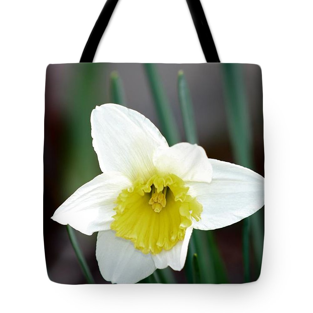 Daffodil Tote Bag featuring the photograph Bowed Daffodil by Nance Larson