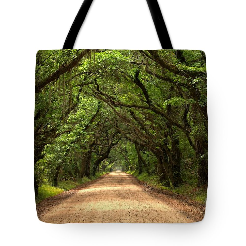Avenue Of The Oaks Tote Bag featuring the photograph Bowing Oak Trees by Adam Jewell