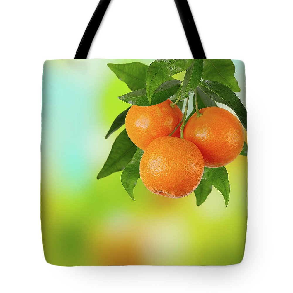 Hanging Tote Bag featuring the photograph Branch Of Tangerines by Sashahaltam
