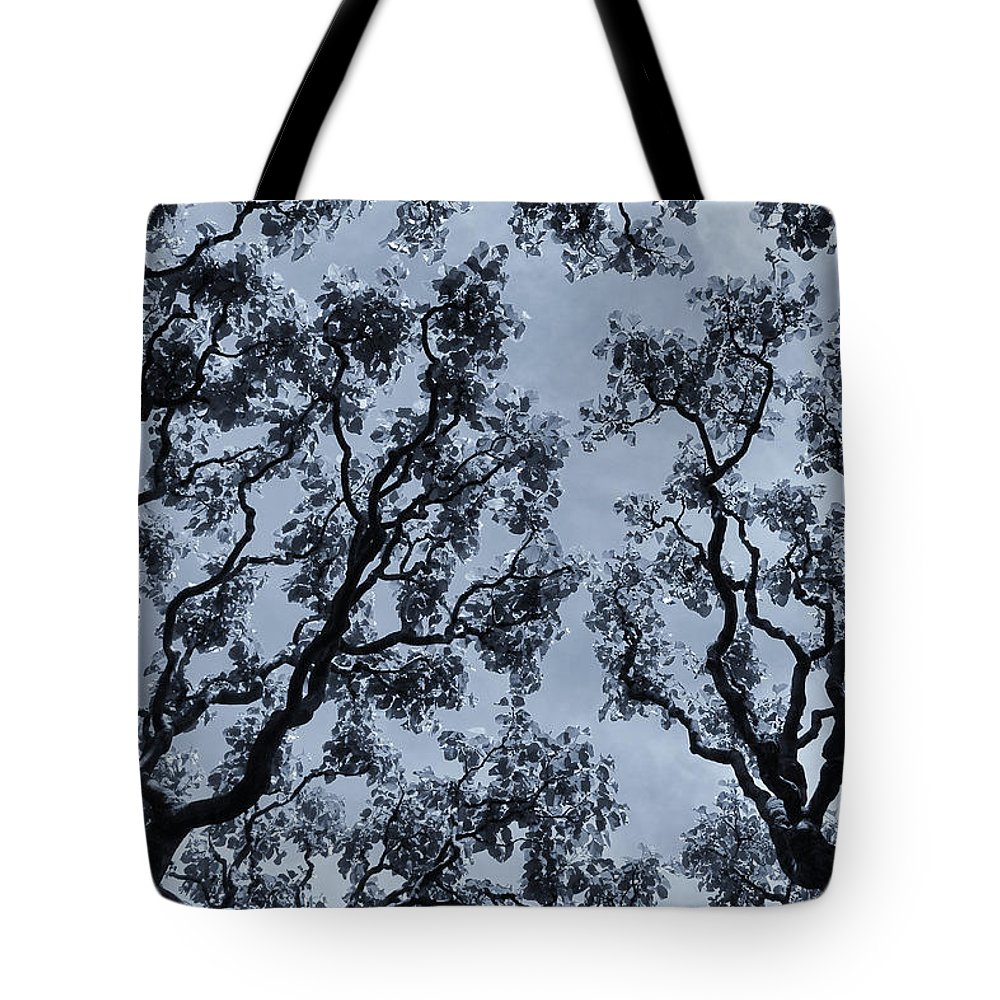 Branches Across Tote Bag featuring the photograph Branches Across by Rachel Cohen