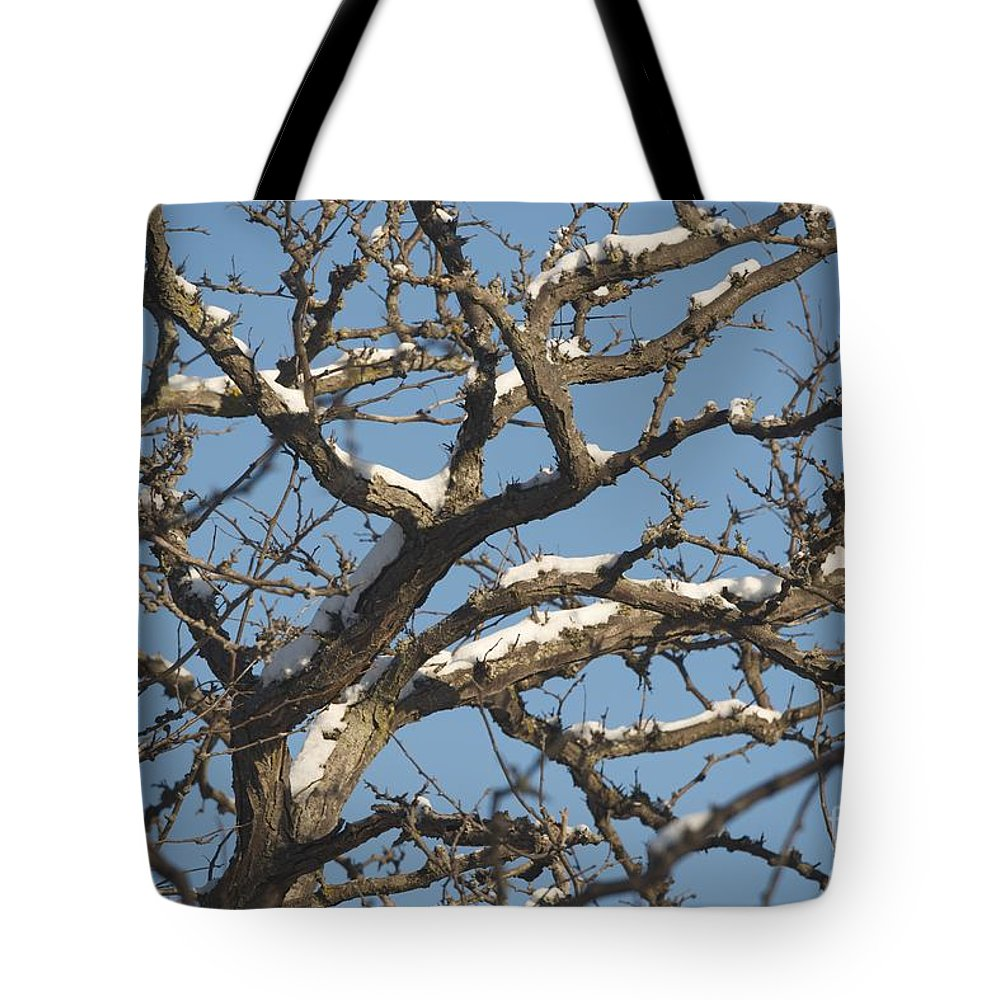 Snow Tote Bag featuring the photograph Branches by Joseph Yarbrough