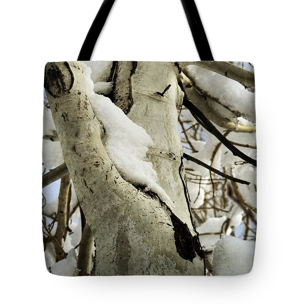 Forest Tote Bag featuring the photograph Branches by Leah Moore