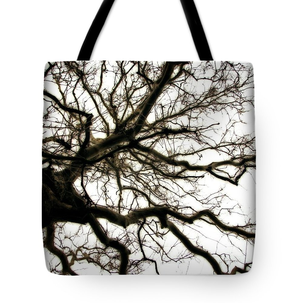 Branches Tote Bag featuring the photograph Branches by Michelle Calkins