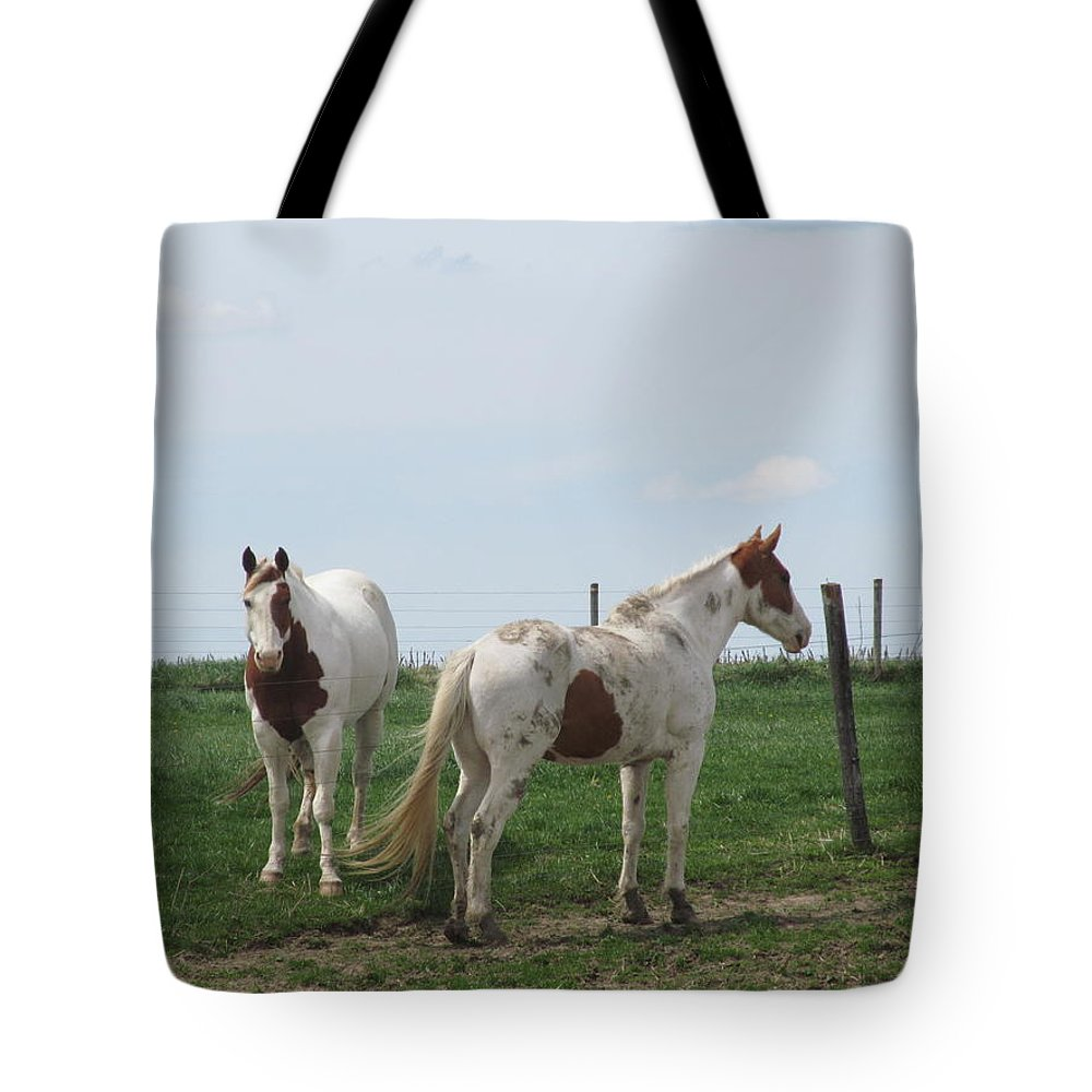 Horse Tote Bag featuring the photograph Breed Horses by Tina M Wenger