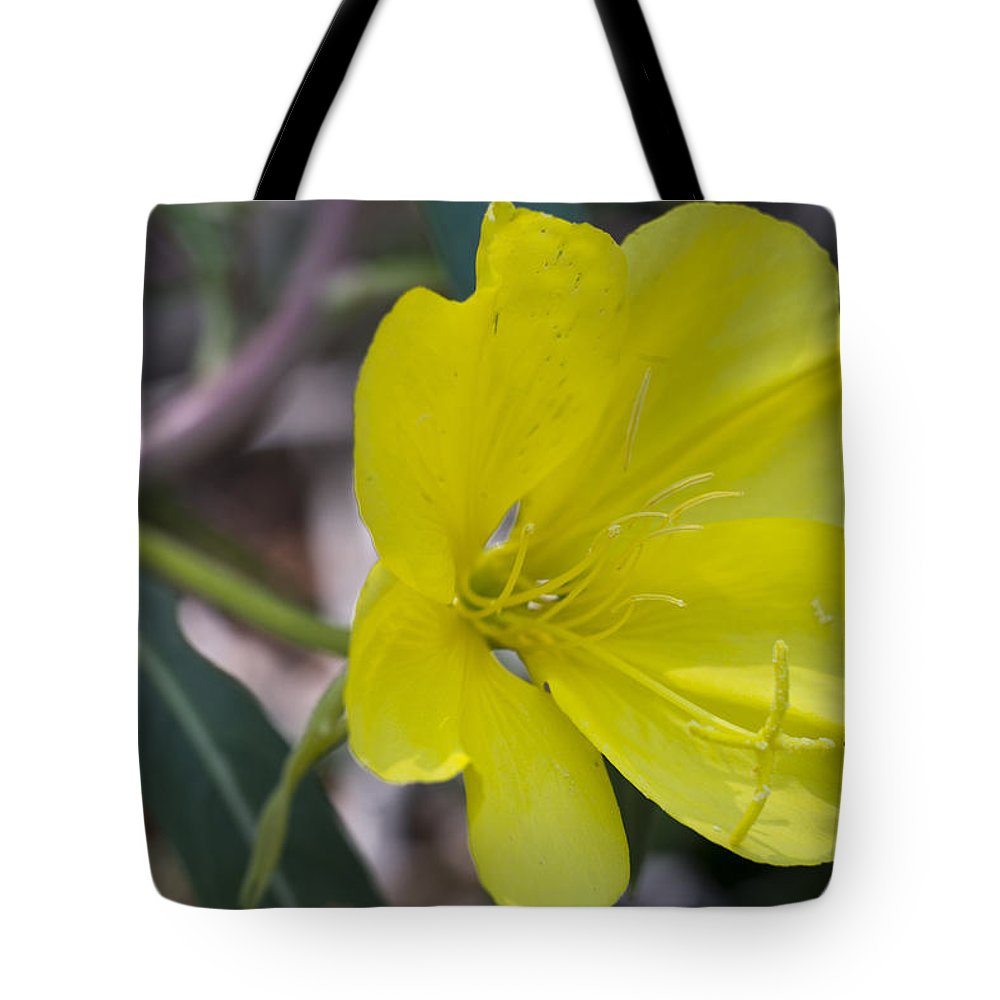 Photography Tote Bag featuring the digital art Bridges Evening Primrose by Neal Hebert