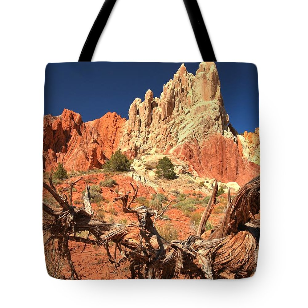 Cottonwood Road Tote Bag featuring the photograph Bright And Twisted by Adam Jewell