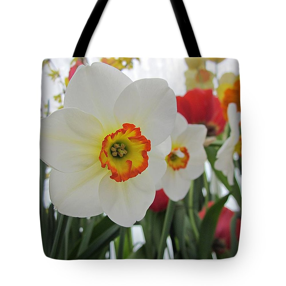 Daffodils Tote Bag featuring the photograph Bright Daffodils by MTBobbins Photography