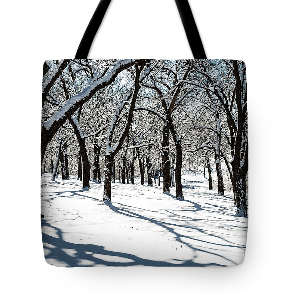 Winter Scene Tote Bag featuring the photograph Bright Day by Edward Peterson