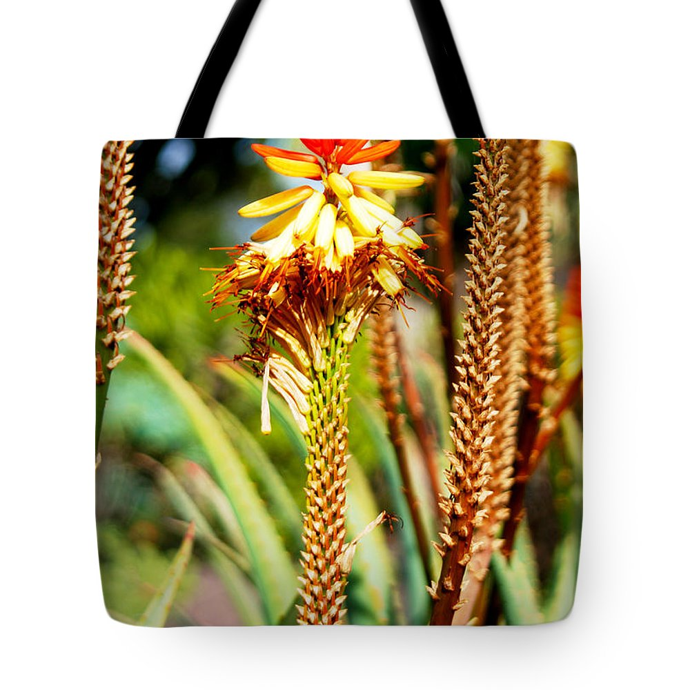 Las Palmas Tote Bag featuring the photograph Bright Flower 1 by Tracy Winter