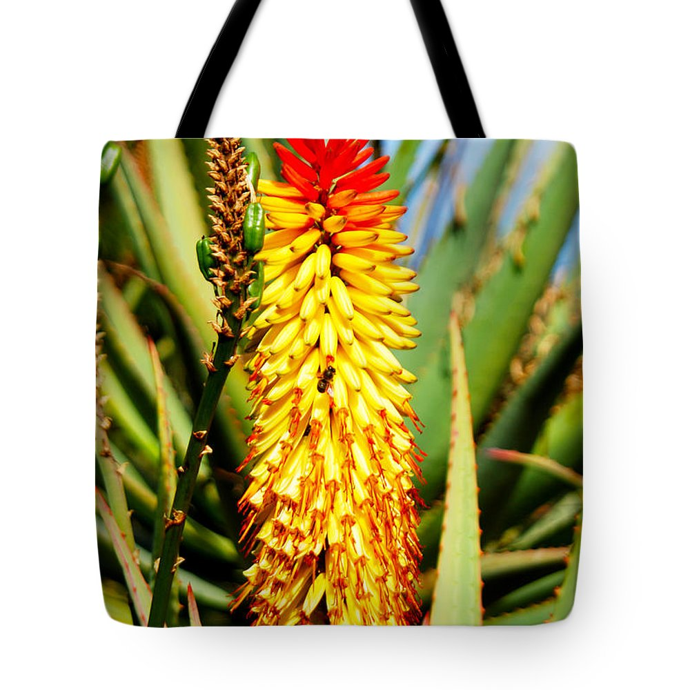 Las Palmas Tote Bag featuring the photograph Bright Flower 2 by Tracy Winter