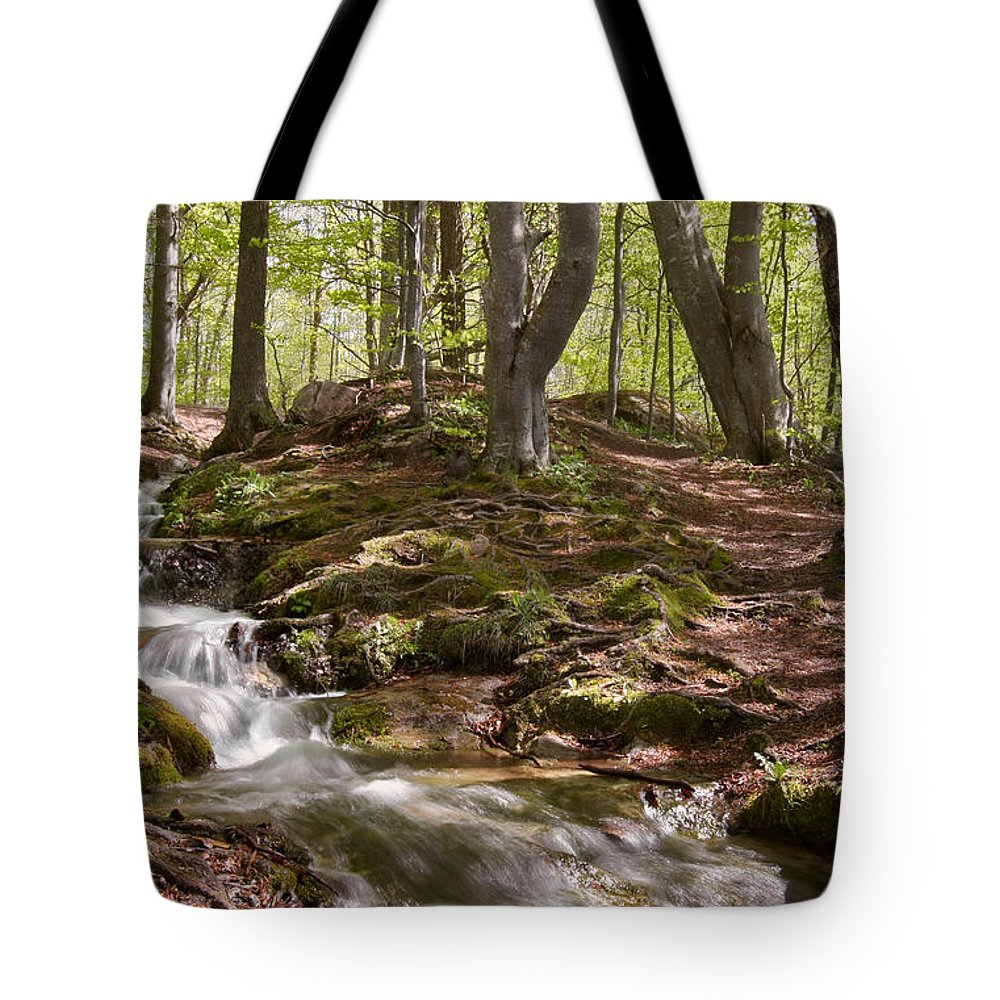 Wood Tote Bag featuring the photograph Bright Forest Creek by Dreamland Media