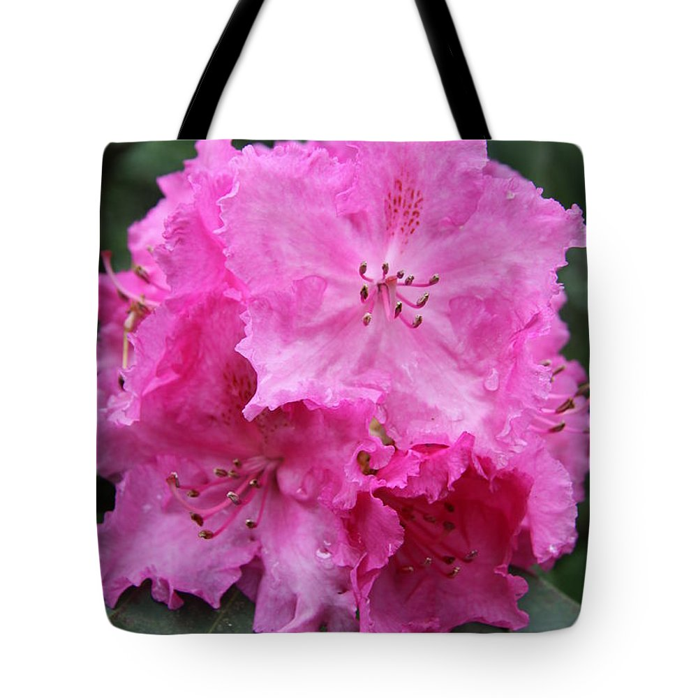 Rhododendron Tote Bag featuring the photograph Bright Pink Blossoms by Christiane Schulze Art And Photography