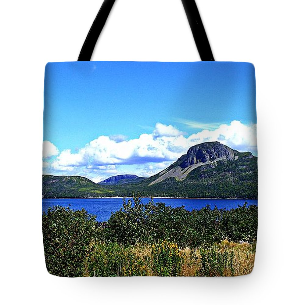 Barbara Griffin Tote Bag featuring the photograph Bright Sunny Day by Barbara Griffin