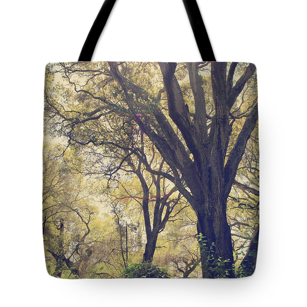 Dry Creek Regional Park Tote Bag featuring the photograph Brightening Up the Day by Laurie Search