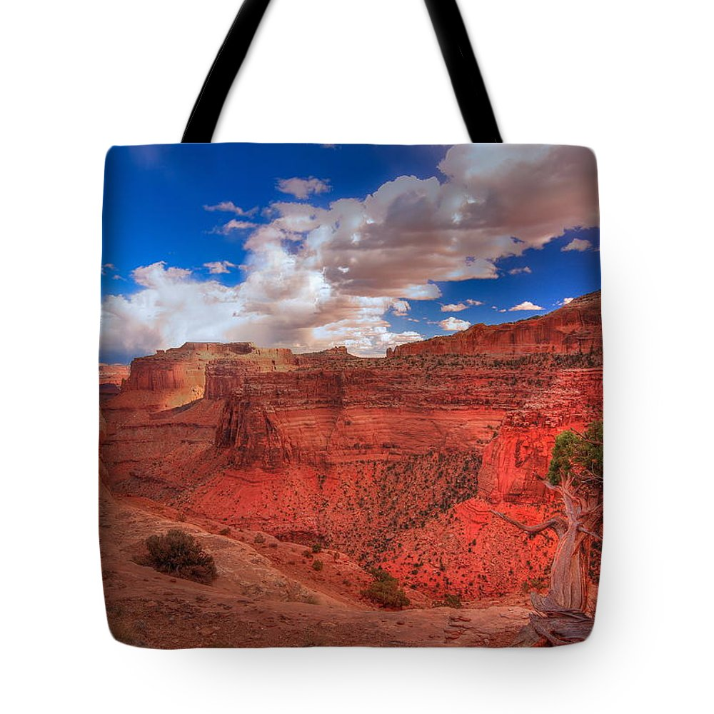 Landscape Tote Bag featuring the photograph Bristlecone Guardian by Bill Sherrell