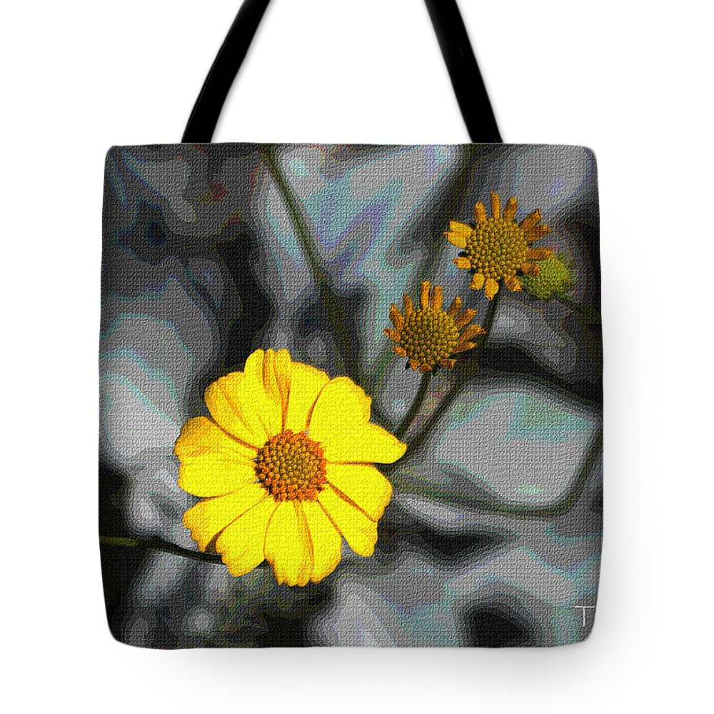 Brittle Bush Tote Bag featuring the photograph Brittle Bush Flowers In December by Tom Janca