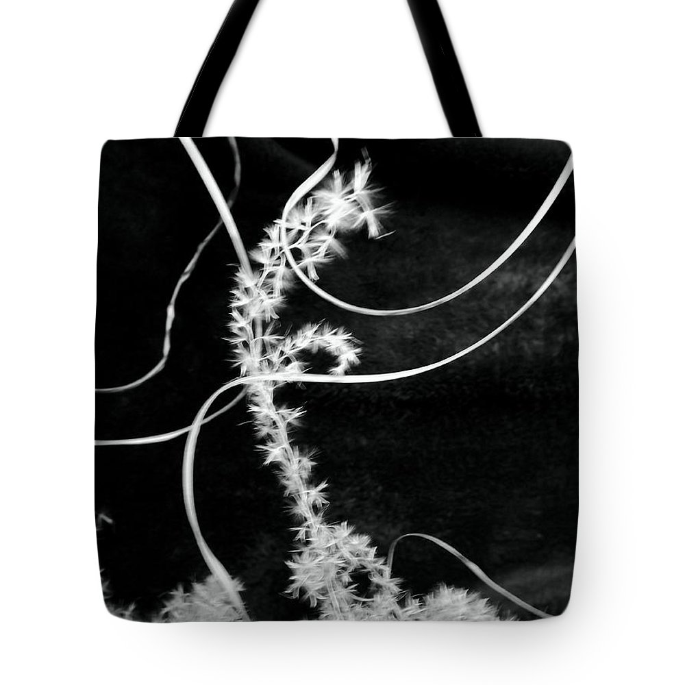 Grass Tote Bag featuring the photograph Broken by Robyn King