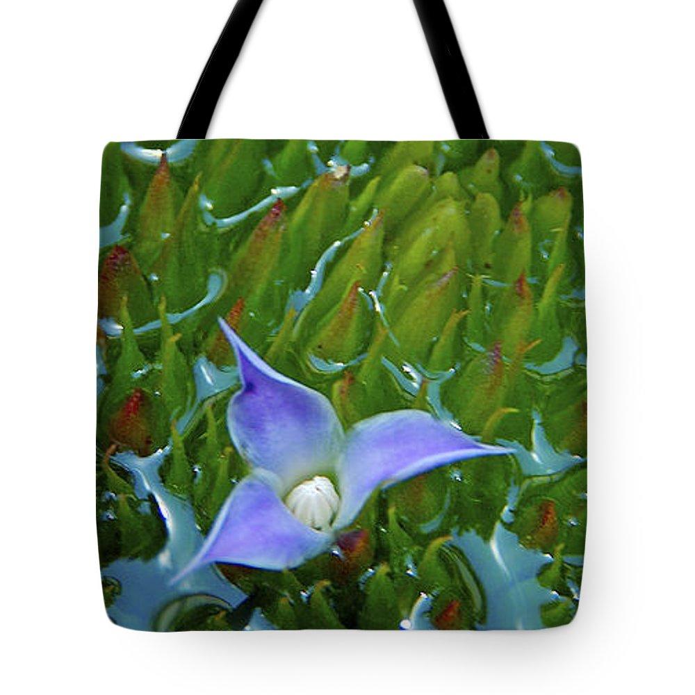 Bromeliad Tote Bag featuring the photograph Bromeliad Pond by Jocelyn Kahawai