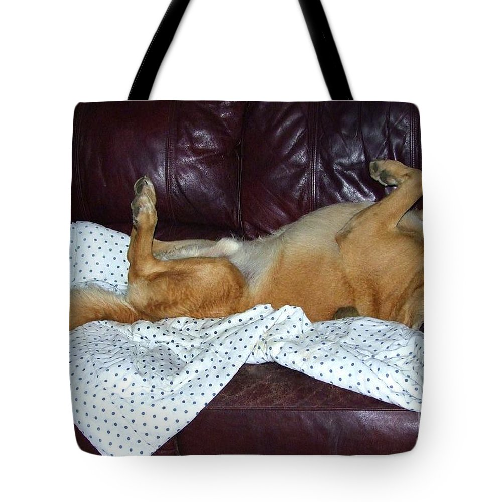 Brown Dogs Tote Bag featuring the photograph Bronson And His Ball by Mary Deal