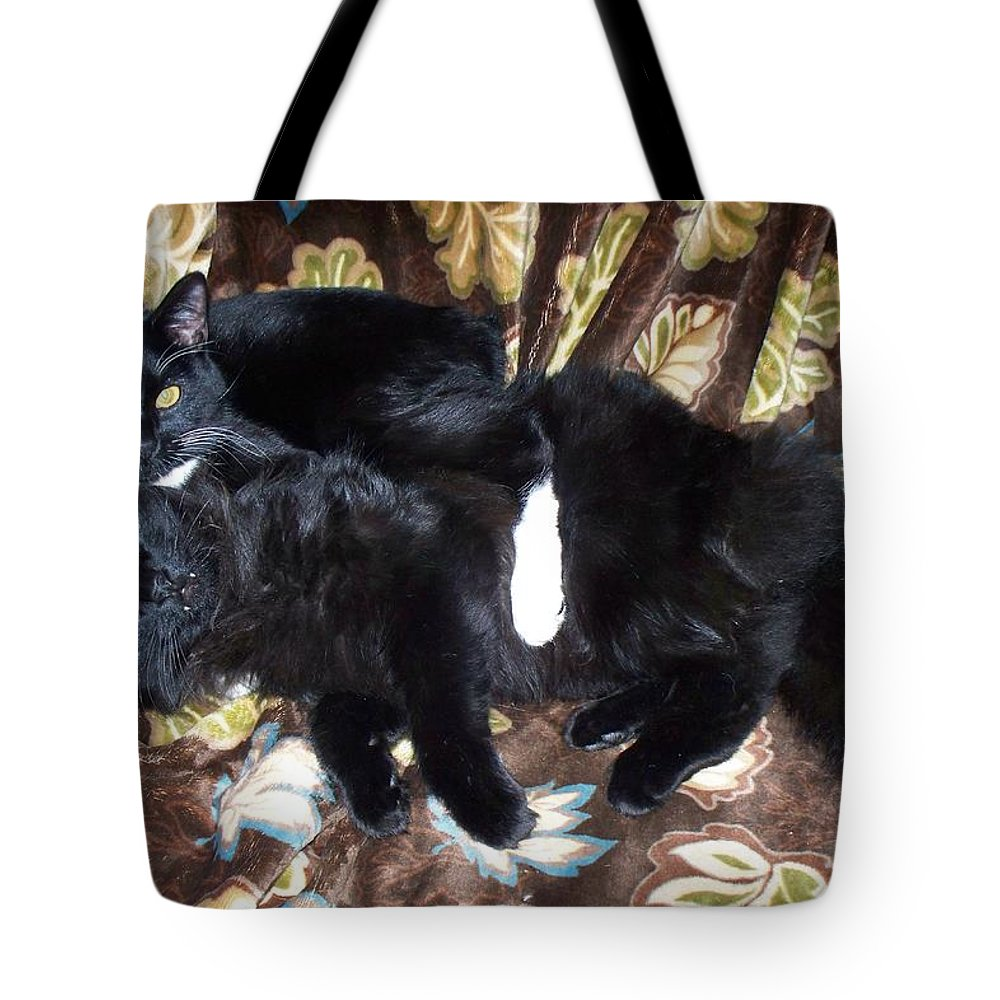 Cats Tote Bag featuring the photograph Brotherly Love by Lisa Wormell