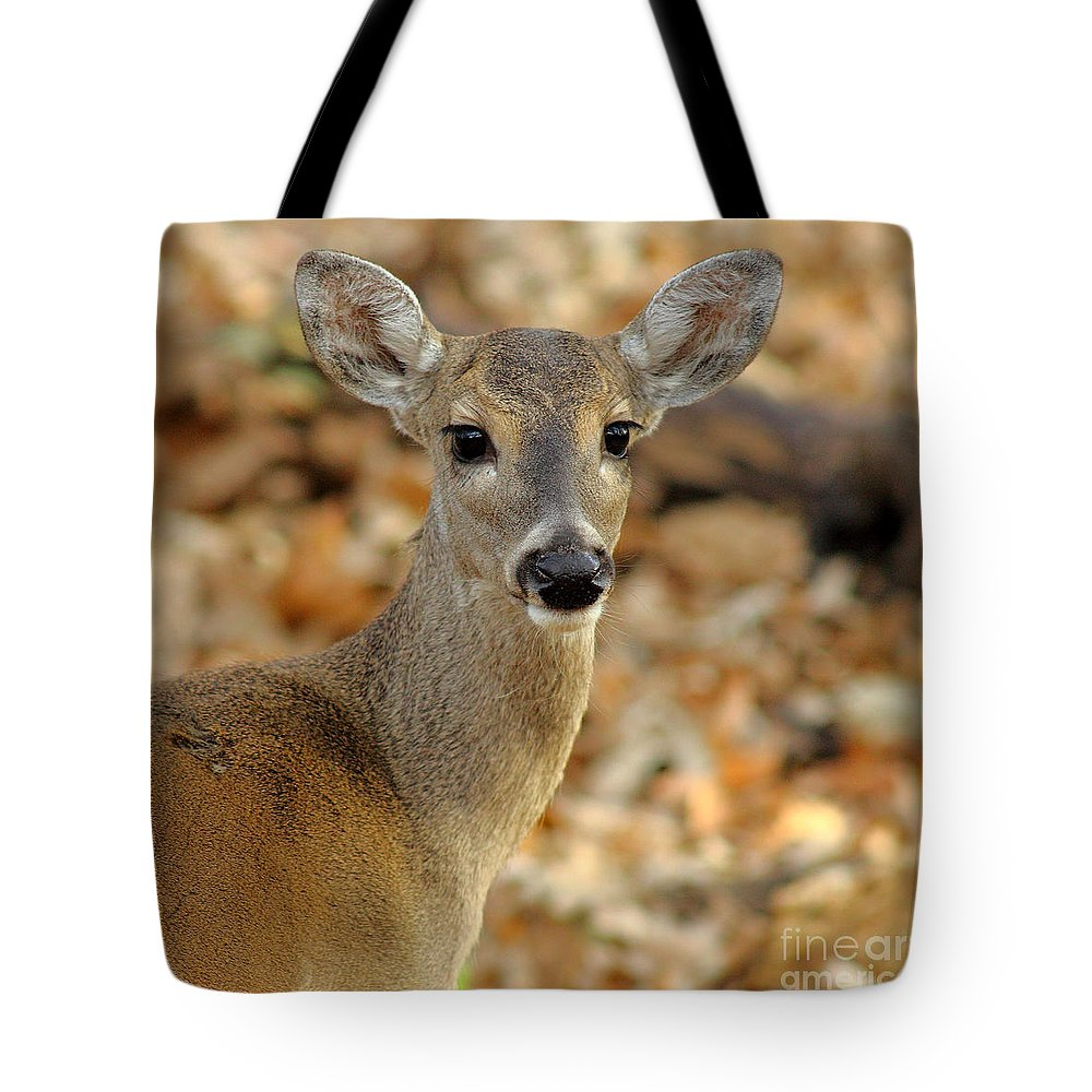 Animal Tote Bag featuring the photograph Brown-eyed Girl by Robert Frederick