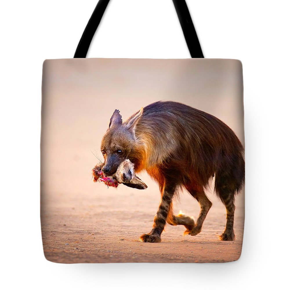 Hyena Tote Bag featuring the photograph Brown Hyena With Bat-eared Fox In Jaws by Johan Swanepoel