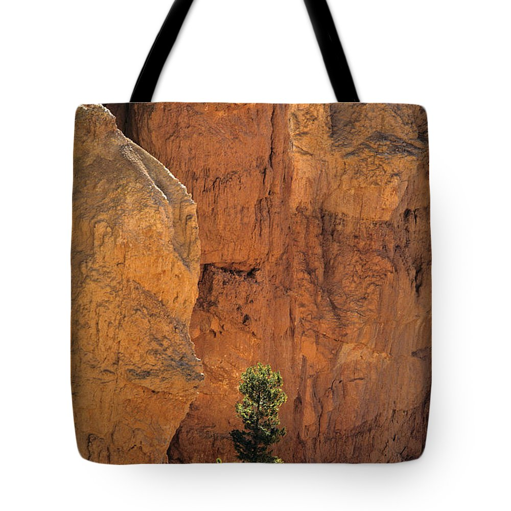 Landscape Tote Bag featuring the photograph Bryce Canyon National Park Hoodo Monoliths Sunset From Sunset Po by Jim Corwin