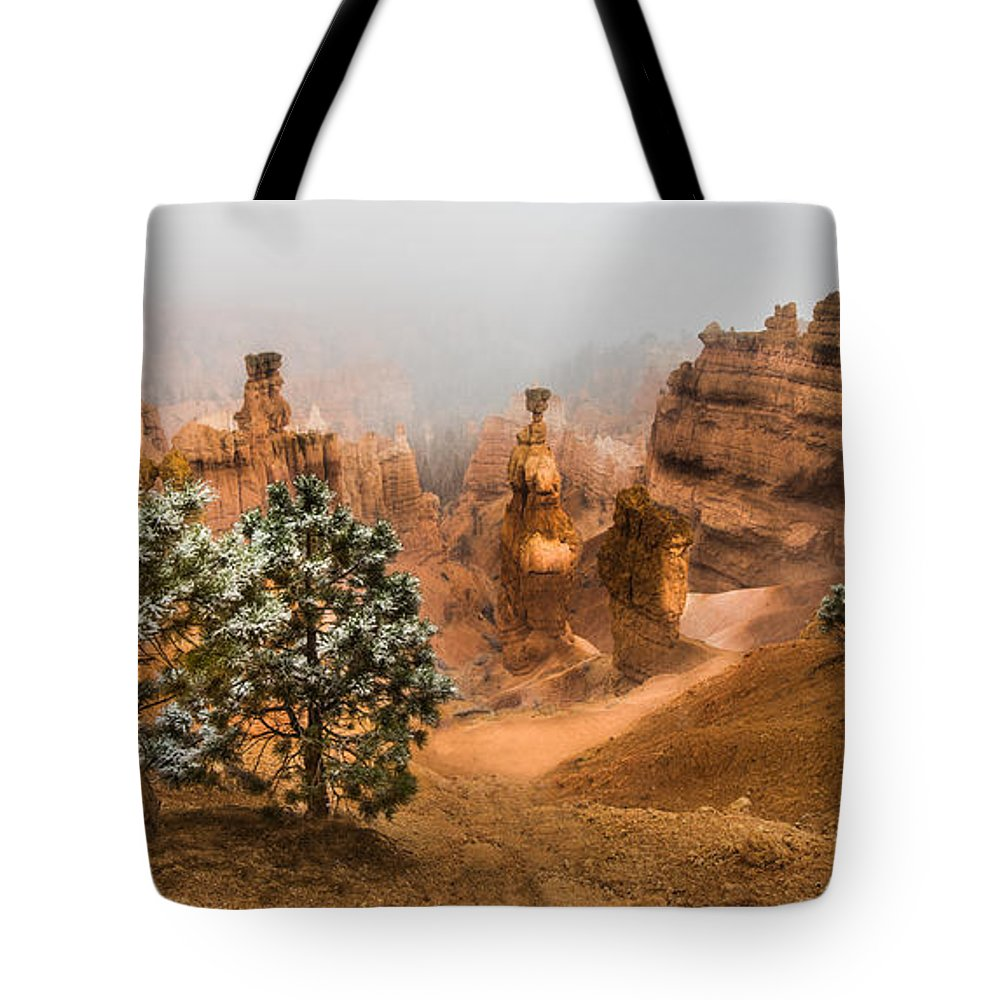 Bryce Tote Bag featuring the photograph Bryce Canyon National Park by Larry Marshall