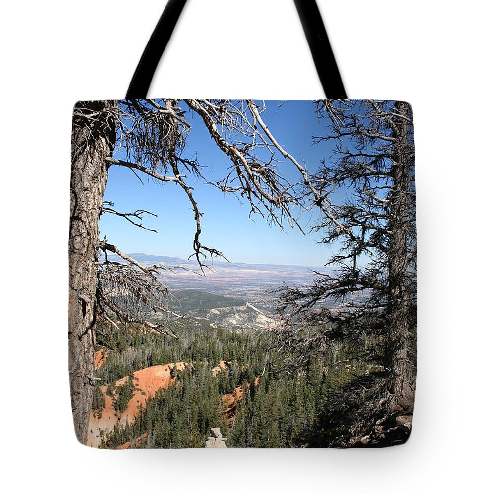 Trees Tote Bag featuring the photograph Bryce Canyon Overlook With Dead Trees by Christiane Schulze Art And Photography