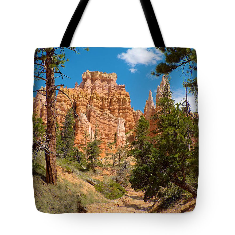Bryce Canyon Tote Bag featuring the photograph Bryce Hills 2 by Richard J Cassato