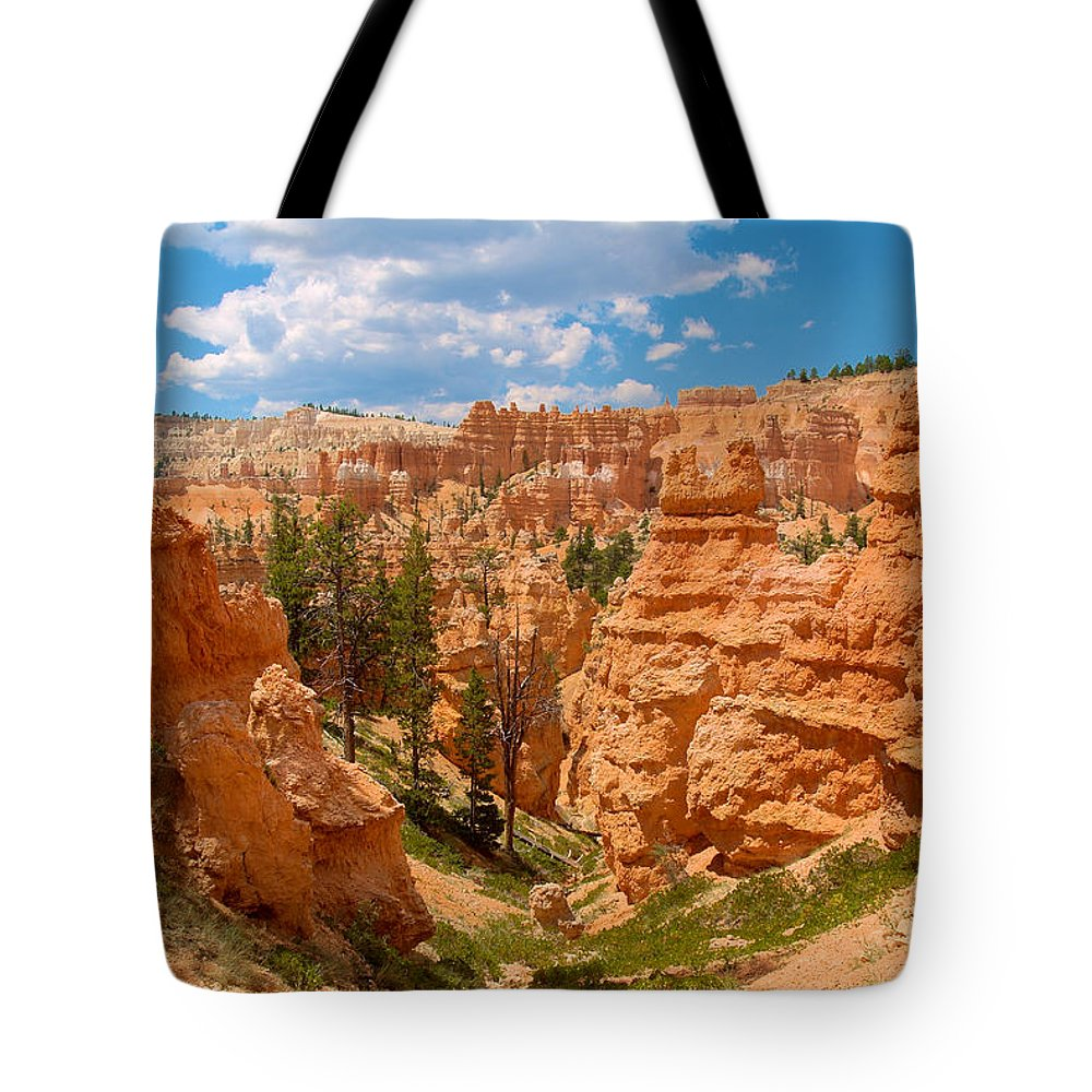 Bryce Canyon Tote Bag featuring the photograph Bryce Hills 6 by Richard J Cassato
