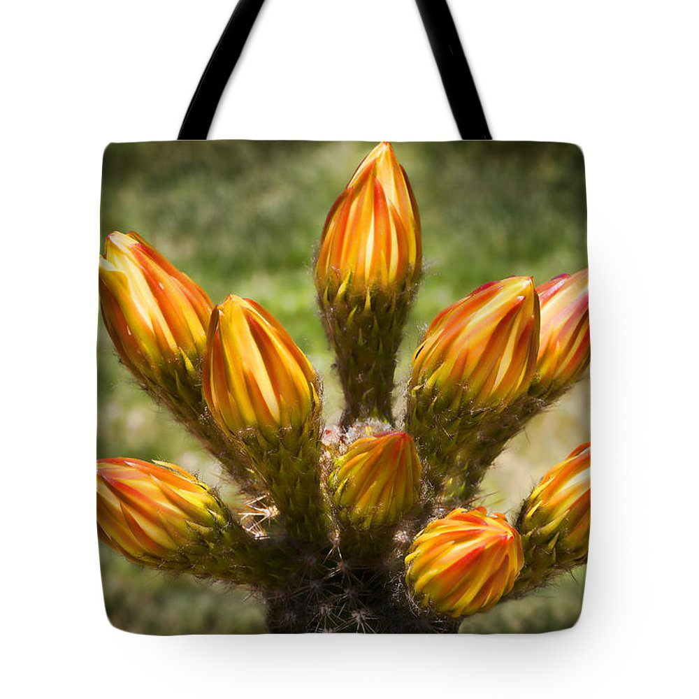 Buds Tote Bag featuring the photograph Bud Bouquet by Kelley King