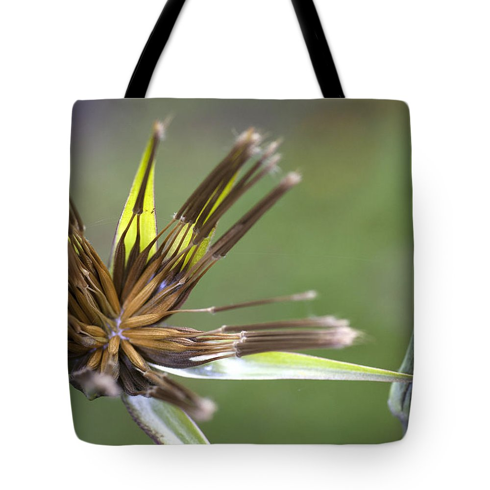 Flower Tote Bag featuring the photograph Bud Star by Richard Thomas