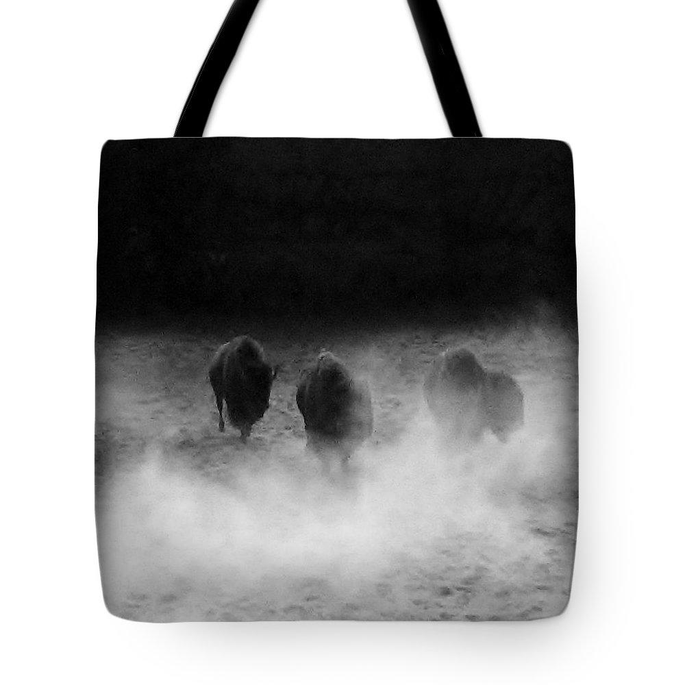 Buffalo Tote Bag featuring the photograph Buffalo by Janice Spivey
