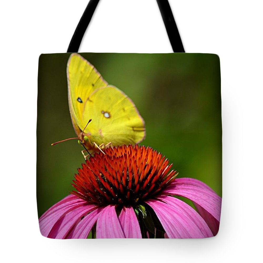 Yellow Tote Bag featuring the photograph Bug Eyes by Debbie Summers