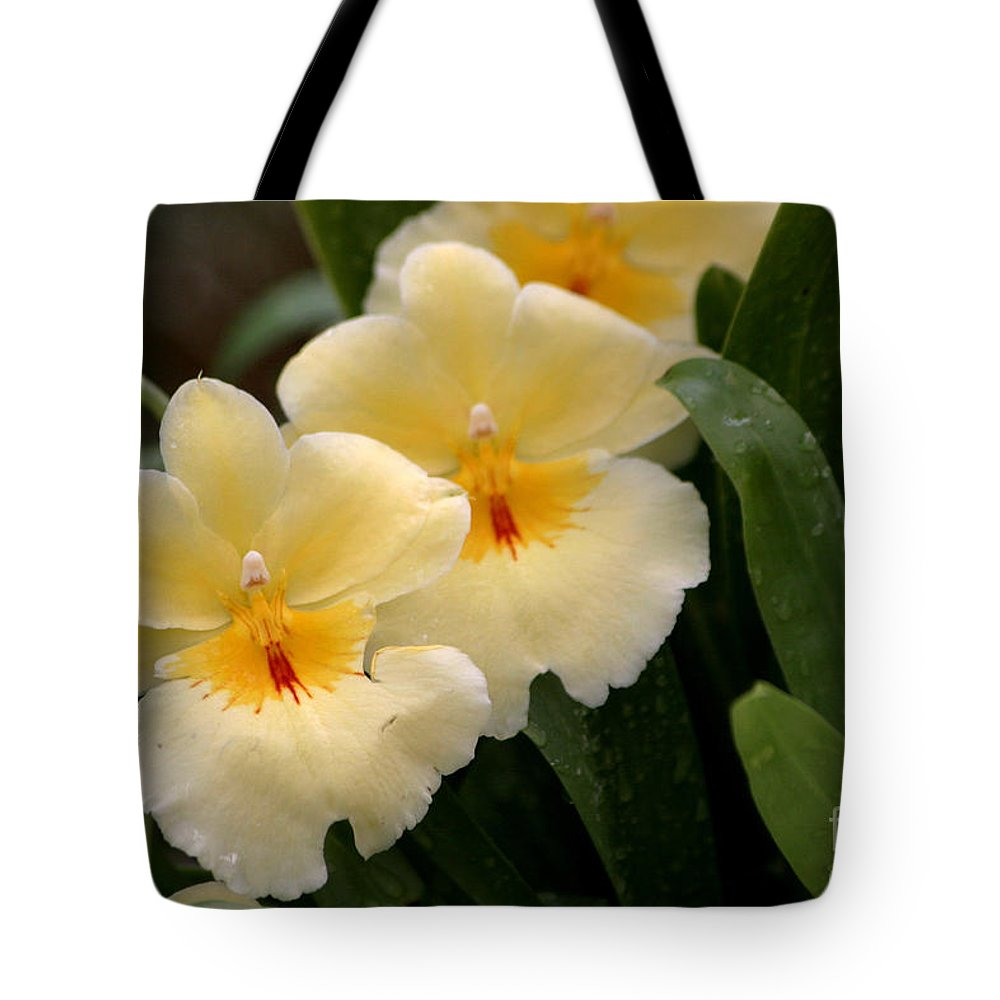 Orchids Tote Bag featuring the photograph Build Me Up Buttercup by Living Color Photography Lorraine Lynch