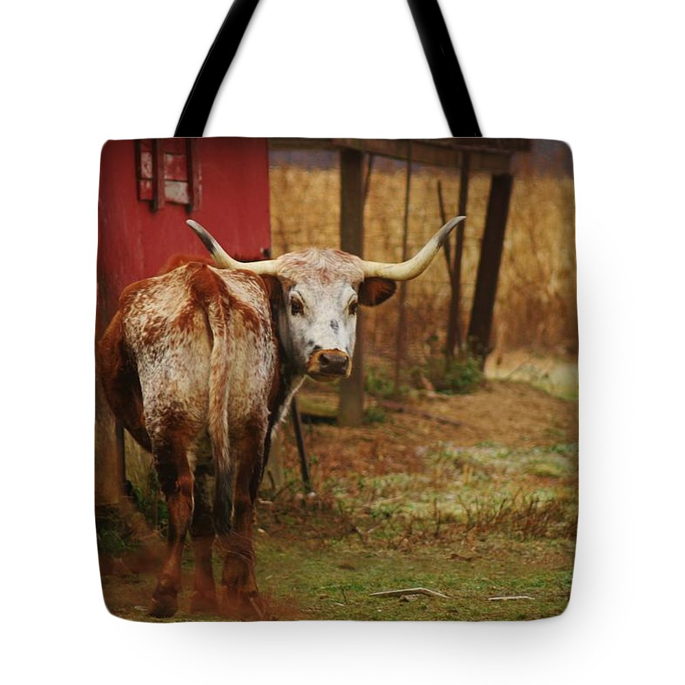 Bull Tote Bag featuring the photograph Bull by Dan Young