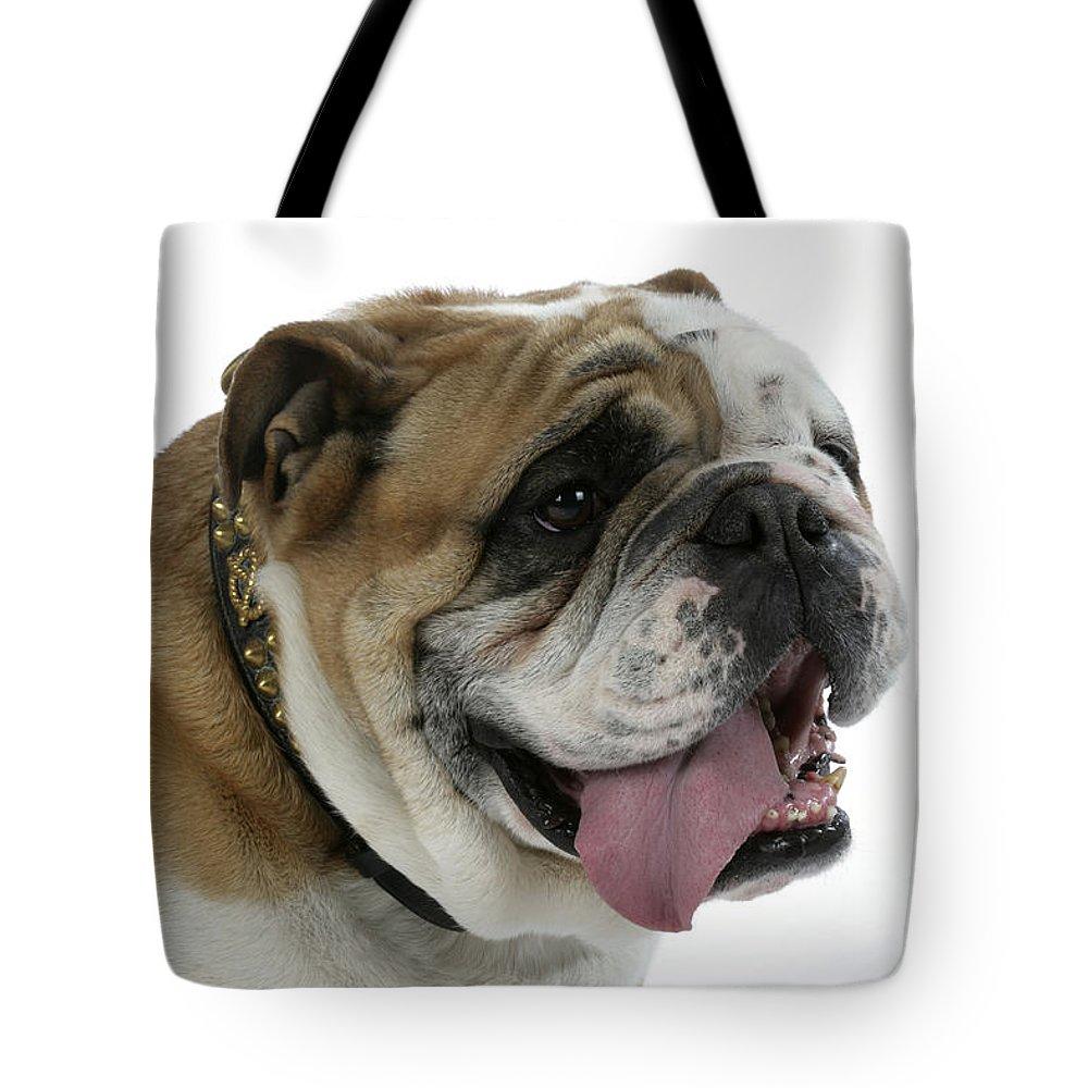 Bulldog Tote Bag featuring the photograph Bulldog, Male Panting by John Daniels