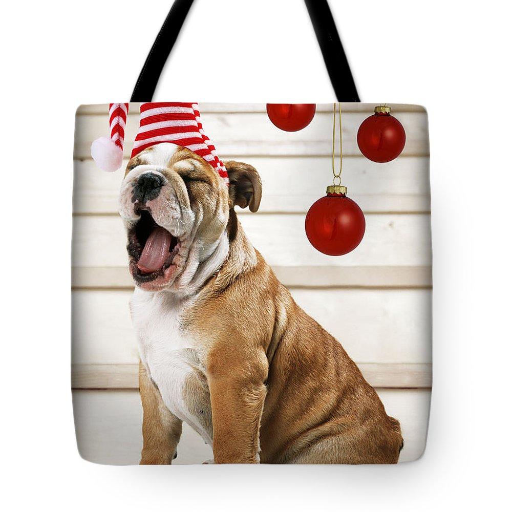 Bulldog Tote Bag featuring the photograph Holiday Bulldog Puppy by John Daniels Paul Brown Jeff Ried