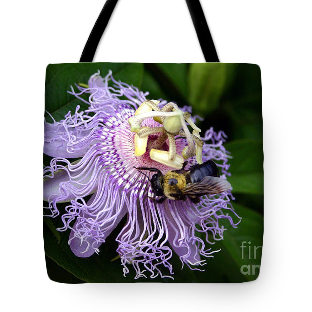 Bumble Bee Tote Bag featuring the photograph Bumble by Beth Ferris Sale