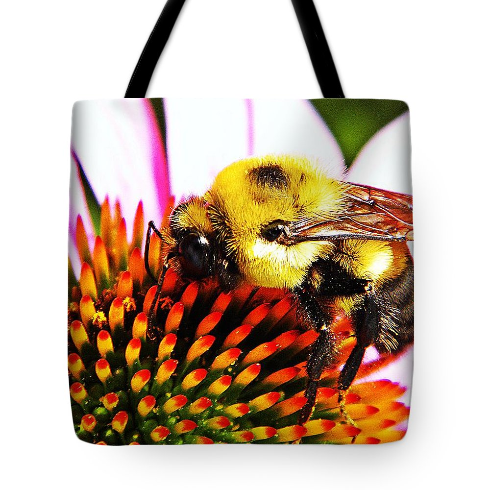 Bee Tote Bag featuring the photograph Bumblebee On Echinacea by Chris Berry