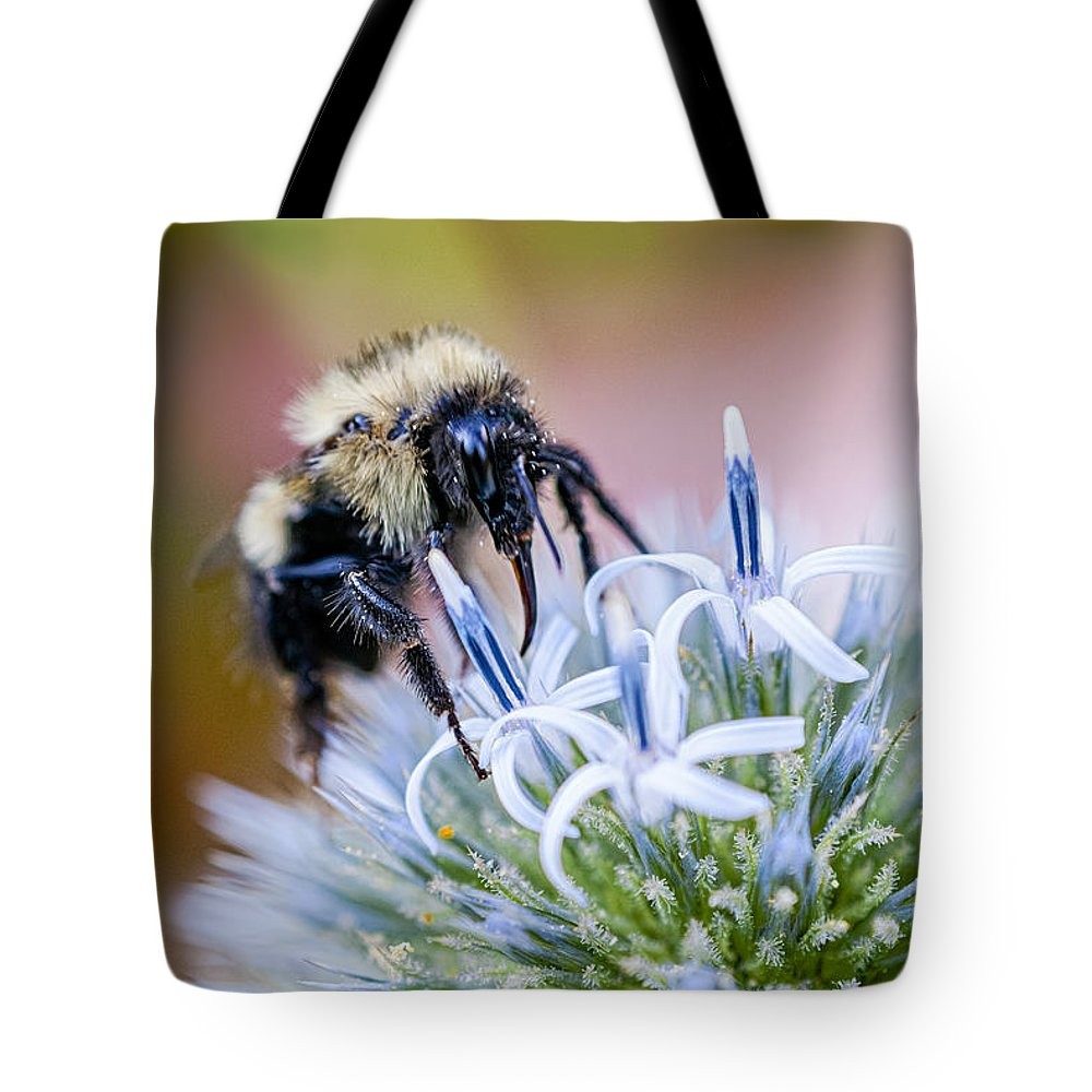 Thistle Tote Bag featuring the photograph Bumblebee On Thistle Blossom by Marty Saccone