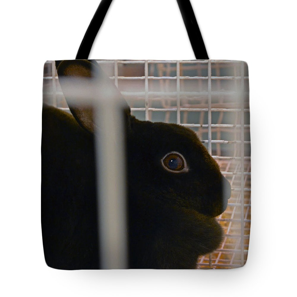 Bunny Tote Bag featuring the photograph Bunny by Bill Owen