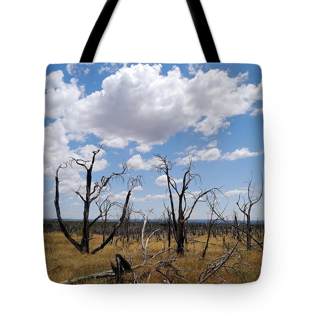 Clouds Tote Bag featuring the photograph Burned Trees On Colorado Plateau by Christiane Schulze Art And Photography