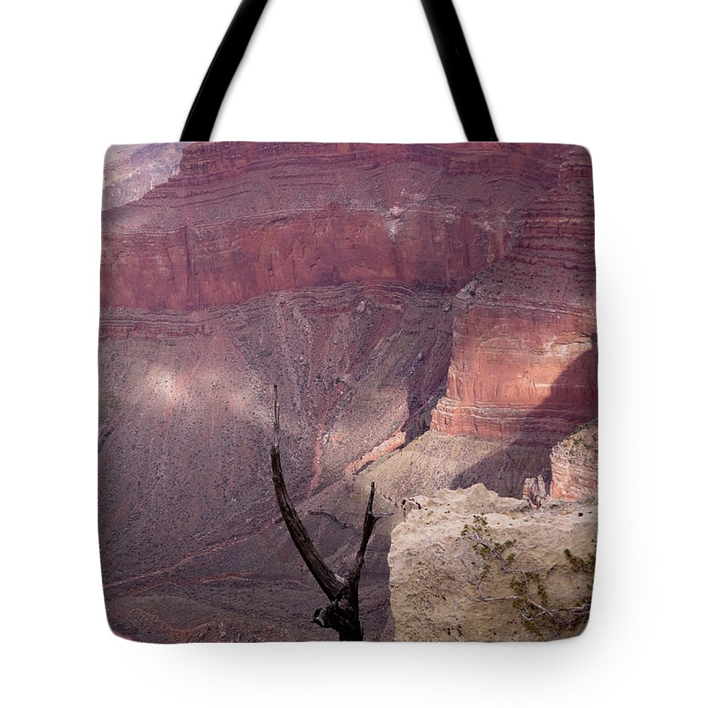 Nature Tote Bag featuring the photograph Burnt Tree by Mary Mikawoz