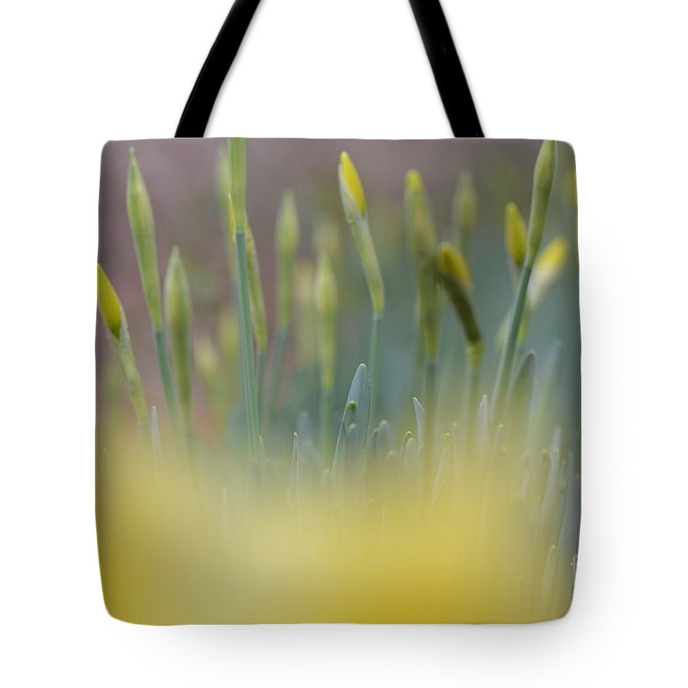 Floral Tote Bag featuring the photograph Bursting Into Spring 2 by Barb Dalton
