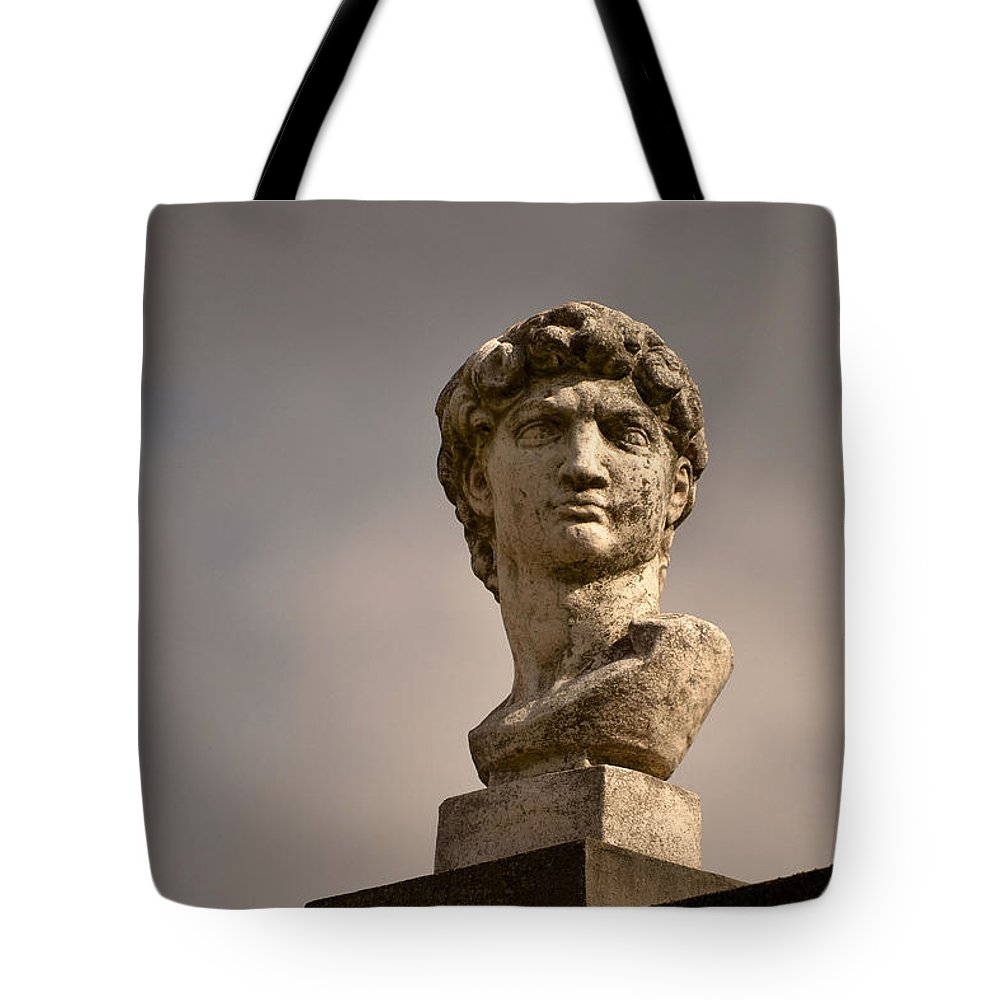 Bust Tote Bag featuring the photograph Bust Of Apollo by Nadalyn Larsen